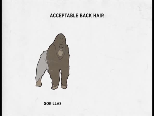Guy Code: Sneak Peek