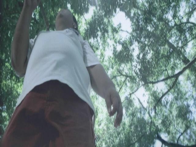 Bintang 14 Hari (Video)