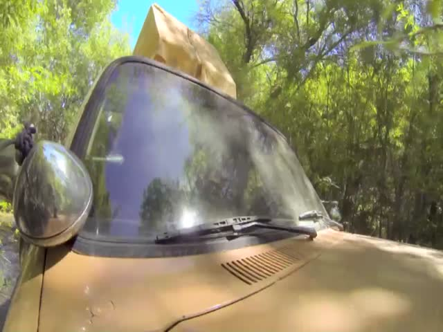 &quot;MTV Movie Awards Host Rebel Wilson Rides 'Iron-Mangina' To The Big Show&quot;